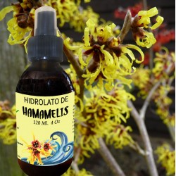 Hidrolato de Hamamelis 120 ml